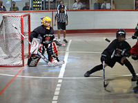 Ball Hockey at Pitt Meadows Arena